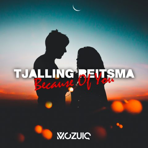 Tjalling Reitsma – Because Of You
